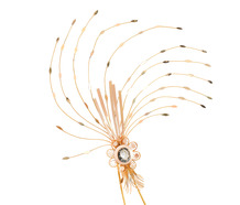 Golden Plumes -  Georgian Diamond Aigrette