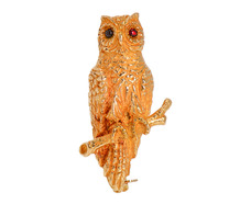 Wise Beyond Years - Gold Owl Brooch