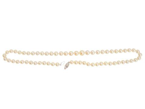 "Vintage Cultured Pearl 21"" Necklace"